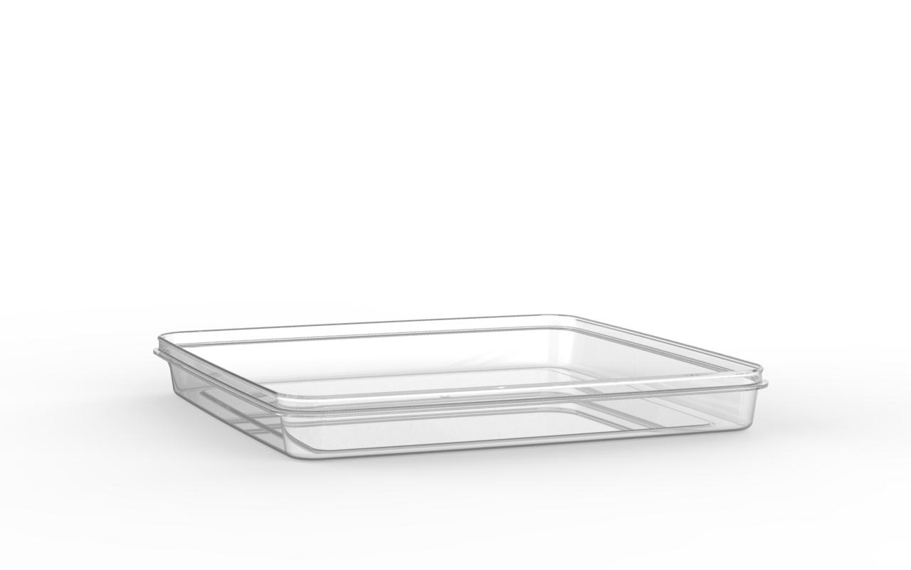 Boîte réutilisable carrée